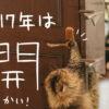 花「開」かす!2017年の目標漢字は「開」