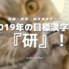 研磨・研究・研ぎ澄ます……2019年の目標漢字は『研』!